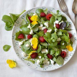cours de cuisine en ligne salade pourpier feta framboises