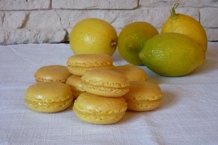 macs_citrons_2011_006
