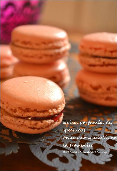 macs speculoos framboise b1