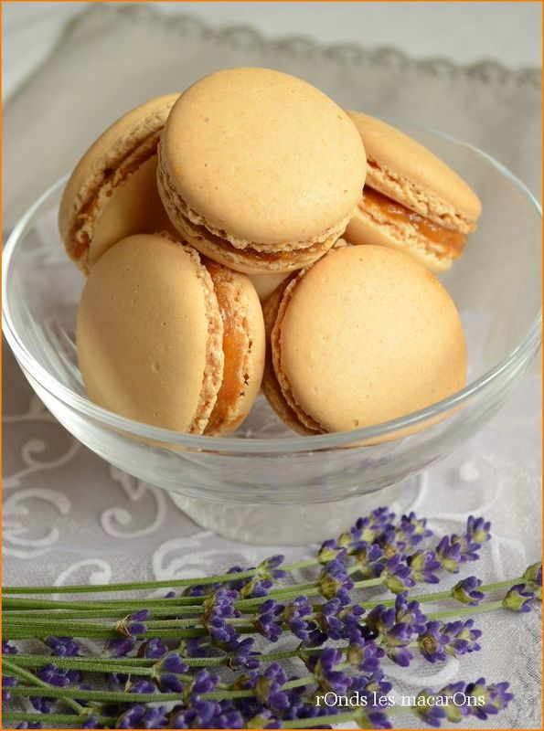 mac abricot lavande b1