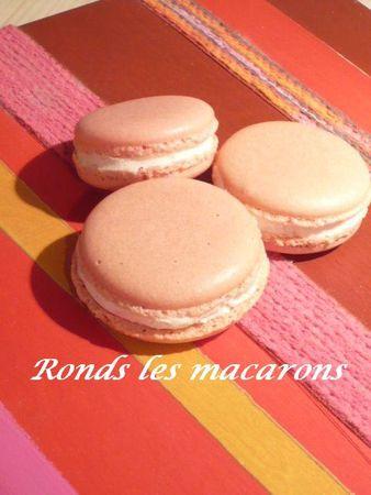 mac_roses_001